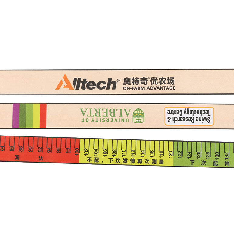 Program Tape Measure
